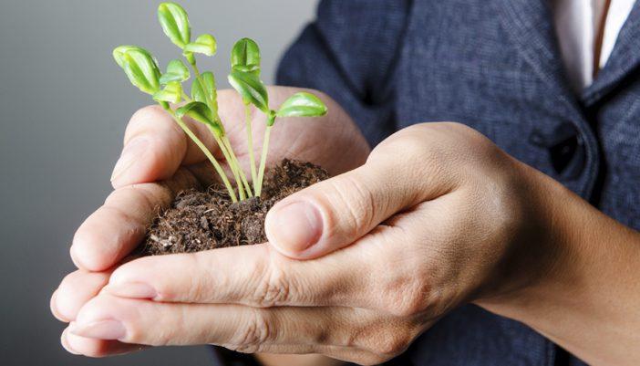 consejos-para-crear-tu-empresa